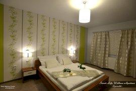 Standard szoba kétszemélyes ággyal-terasszal (Modern)
