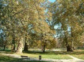 Esterházy kastélypark