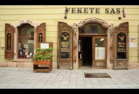 Fekete Sas Patikamúzeum