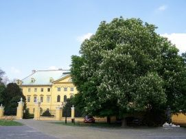 Kalocsai Érseki palota