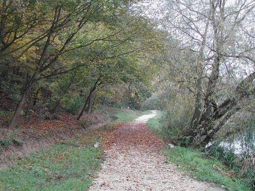 Desedai-parkerdő és arborétum, Kaposvár