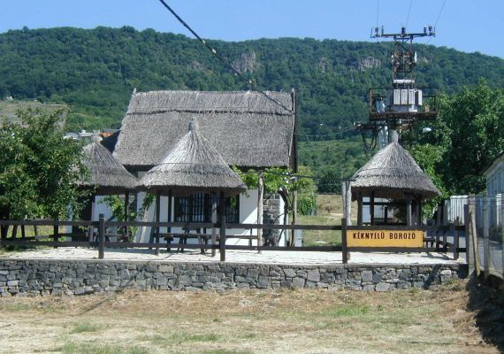 Kéknyelű Borozó, Badacsony