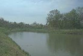 Ligeti Horgásztó