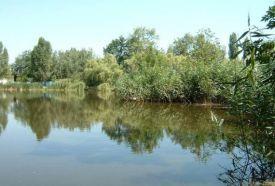 Csónakázó tó (Tiszaliget)