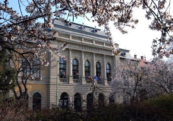 Városháza, Cegléd