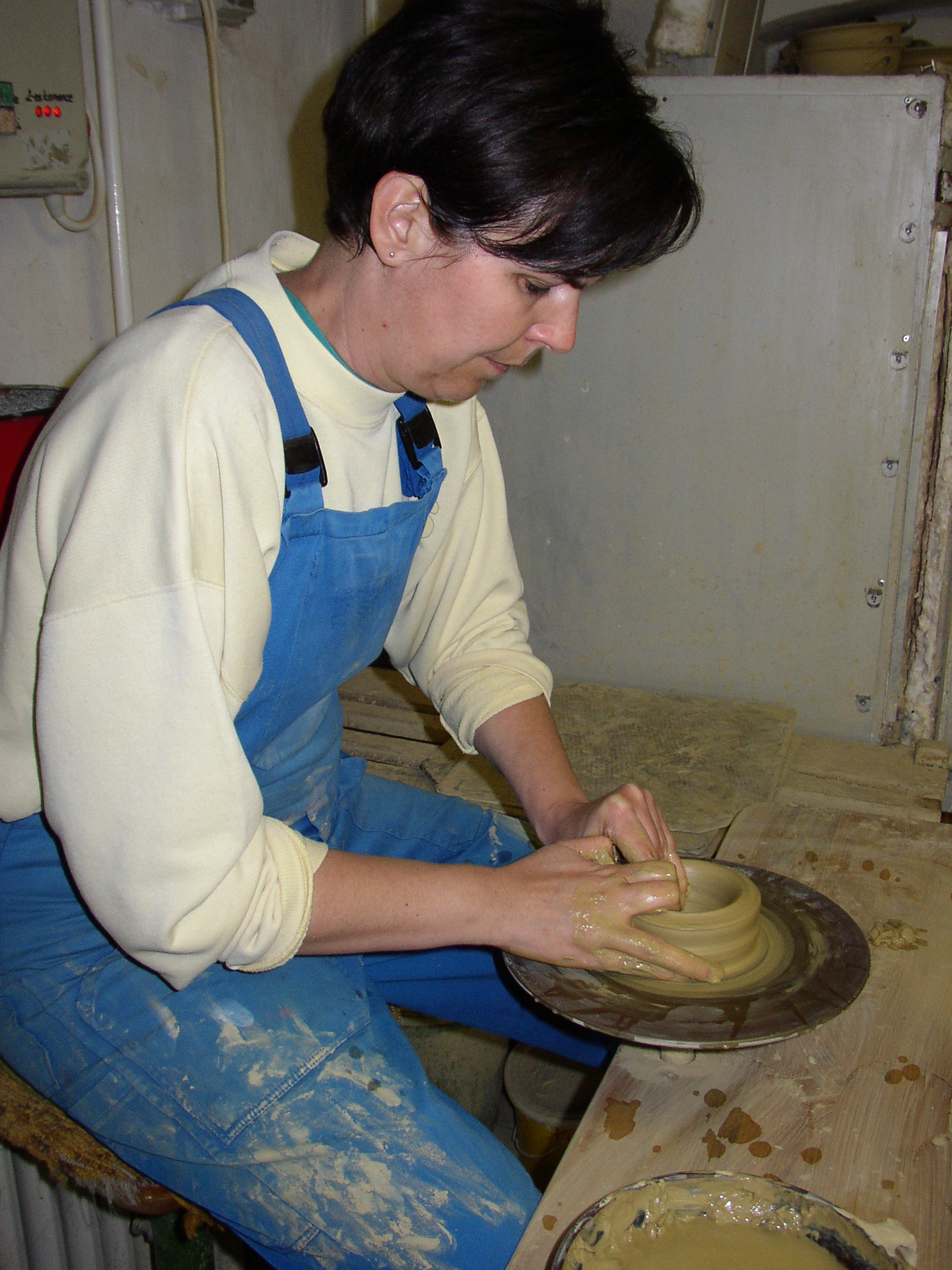 Herbszt Helga keramikus műhelye, Bonyhád