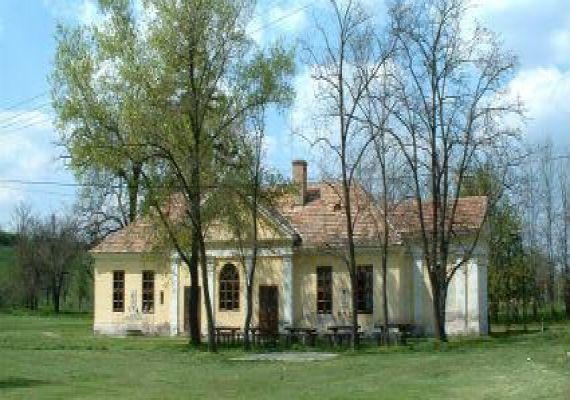 Illyés Gyula Első Iskolája, Pálfa