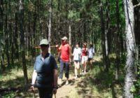 Badacsonyi Geológiai és Botanikai Tanösvény