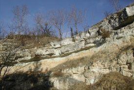 Dunaalmási Kőfejtők természetvédemi terület