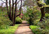Erdőteleki Arborétum