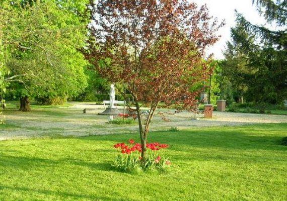 Balmazújváros - Nagyháti kastélypark, erdő, Nagyhát