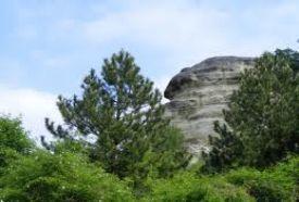 Bolha hegy