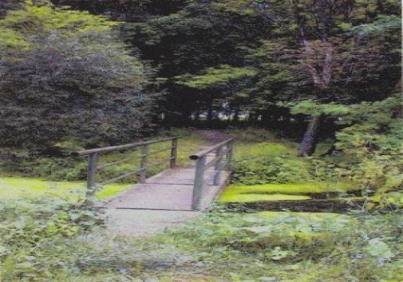 volt Patay-kastély parkja, Taktabáj