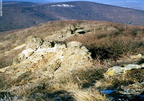 Pilisi Tájvédelmi Körzet, Visegrád