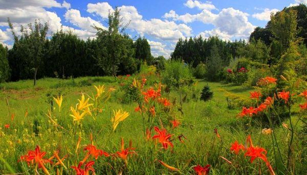 Szabadkai botanikus kert, Kadarkút