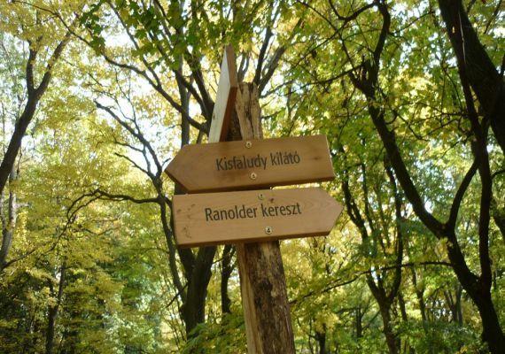 Kisfaludy Kilátó a Badacsonyi-hegyen