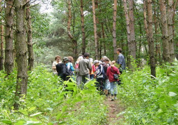 Természet- és Vadvédelmi, Ökoturisztikai Központ, Pázmánd