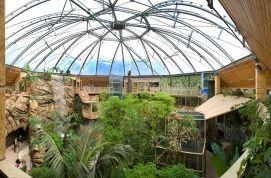 Nyíregyházi Állatkert, állatpark