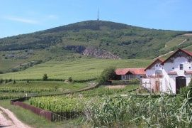Tokaji történelmi borvidék kulturtáj (2002)