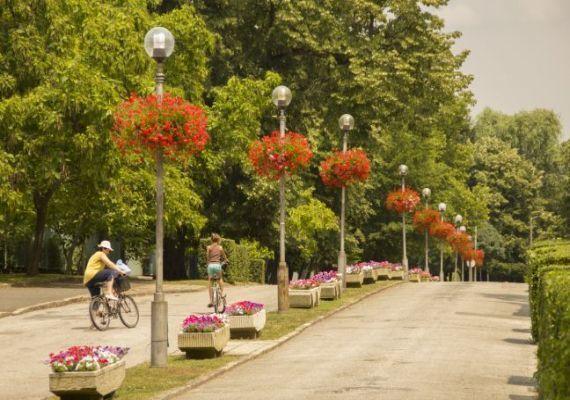 Zsigmondy sétány, park, Harkány