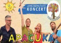 Apacuka Koncert Győrben