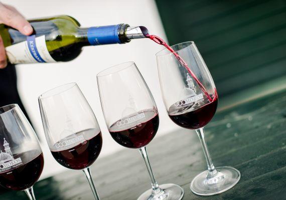 Borkóstoló Villányi borokból és Gyümölcsbor különlegességekből, Palkonya